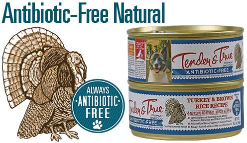 flavor-graphics-turkey-rice-dog-can
