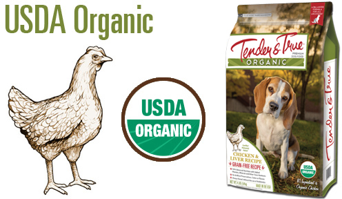 flavor_graphic-organic-chicken-4