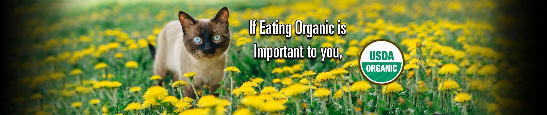 home_slideshow_slide-Eating-Organic233